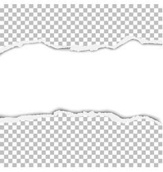 snatched strip from transparent paper sheet vector image