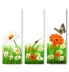 Summer nature banners with colorful flowers and vector image