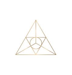 triagle graphic symbol vector image