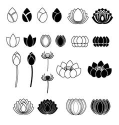 Set of Lotus flowers vector image vector image
