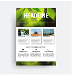 design flyer a4 a brochure template with a photo vector image