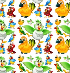 Seamless parrots with different color feathers vector image vector image