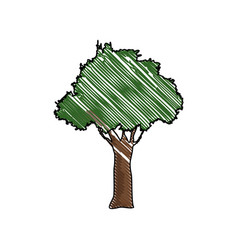 tree forest natural environment wood vector image