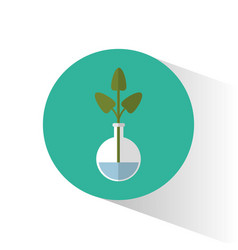 biology plant testt tube school icon vector image