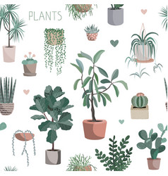 cute houseplants background house indoor plant vector image