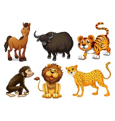 Different kinds of four-legged animals vector