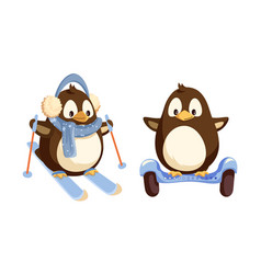 Penguins skiing and running on segway vector
