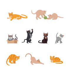 set of funny cats in flat design vector image