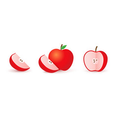 Sliced red apple half and slice realistic red vector
