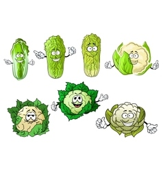 Cartoon cauliflowers and chinese cabbage vector image