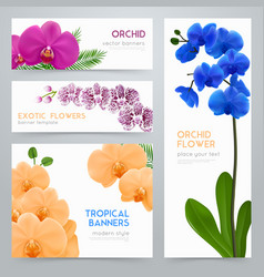 blooming orchids realistic banners set vector image