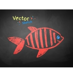 Chalked drawing of fish vector image