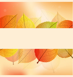 background with stylize autumn leaves vector image