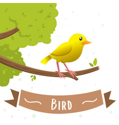 cartoon yellow bird vector image