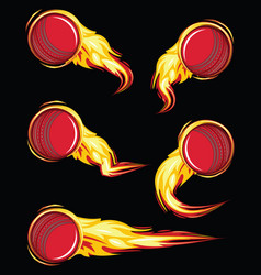 Cricket ball on fire symbols speed set vector