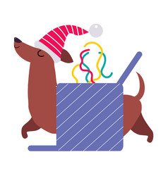 funny dachshund dog in santa hat symbol xmas vector image