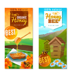 organic honey vertical banners vector image