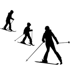 ski school vector image