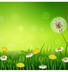 Beautiful Spring or summer season nature vector image vector image