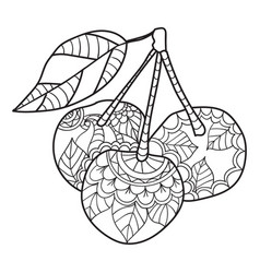Coloring pages for adults cherry sketch fruits vector