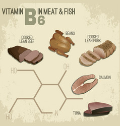 Vitamin b6 food vector