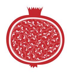 whole pomegranate design juicy fresh fruit icon vector image