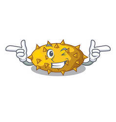 Wink fruit kiwano isolated on mascot vector