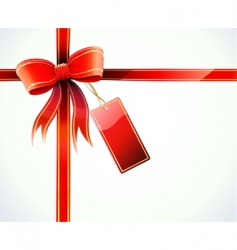gift wrapped vector image vector image