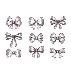 bows set ribbon decoration hand drawn gift vector image