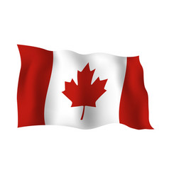 Canada flag isolated on white background vector
