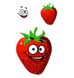 Colorful fresh ripe red strawberry vector image