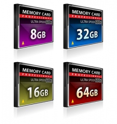 compact flash memory cards vector image