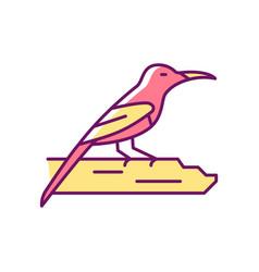 Crimson sunbird rgb color icon vector