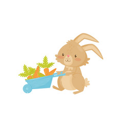 cute rabbit with blue wheelbarrow full of carrot vector image