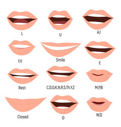 Famale mouth animation phoneme mouth chart vector