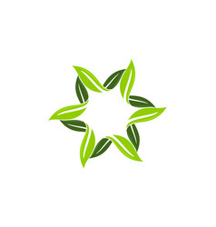 green leaf rotation vector image