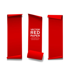 red paper roll long size vertical collecti vector image
