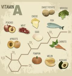 vitamin a foods-retroformula vector image