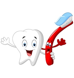Dental Tooth and Toothbrush cartoon character vector image