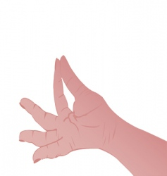 person's hand vector image vector image