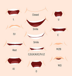 kid mouth animation phoneme mouth chart alphabet vector image