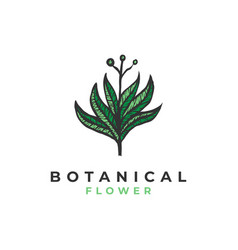 botanical flower logo template vector image
