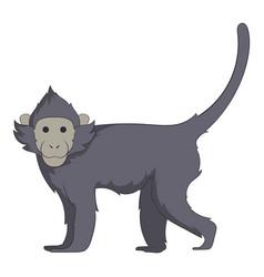 capuchin icon cartoon style vector image vector image