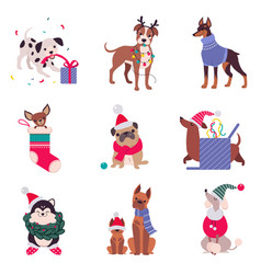 cute cheerful dogs with christmas symbols set vector image