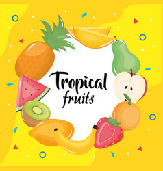 Group tropical and fresh fruits circular frame vector