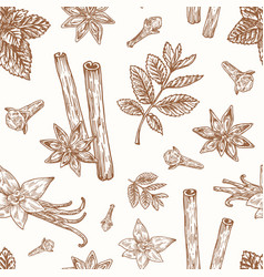 hand drawn anise mint cinnamon clove and vector image