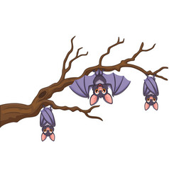 happy cartoon bat hanging on tree vector image