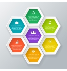 Hexagons for infographic vector