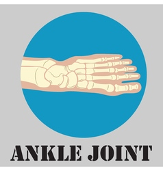 Human ankle joint emblem vector
