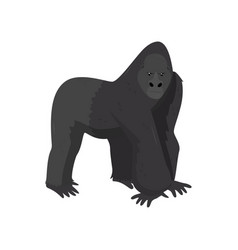 large black gorilla wild mammal animal wildlife vector image
